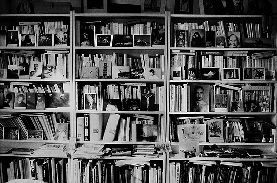bibliothèque_hervé guibert